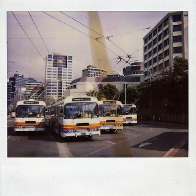 NZ004.jpg