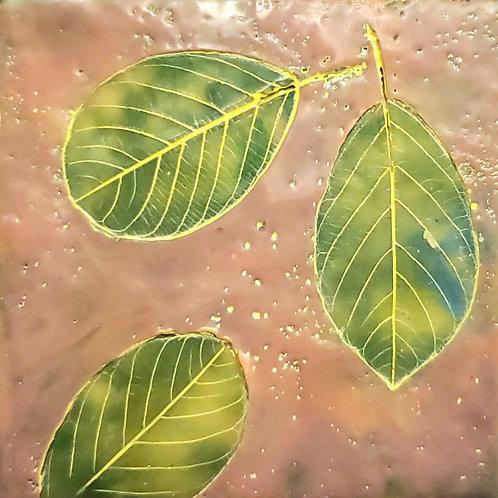 Leaf Impressions 1