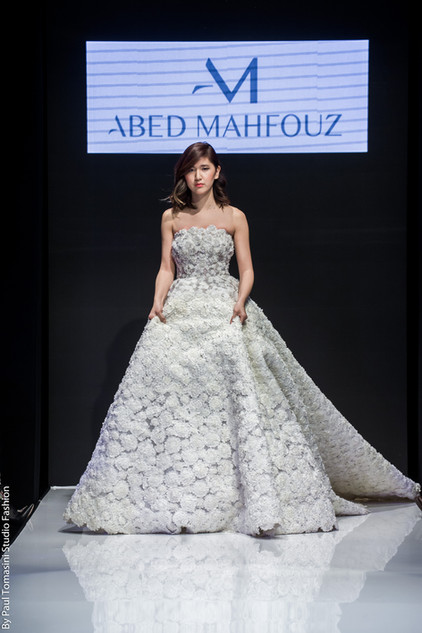 Abed MAHFOUZ 2019 OFS