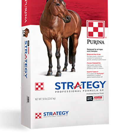 Product_Horse_Strategy_GX_Professional_F