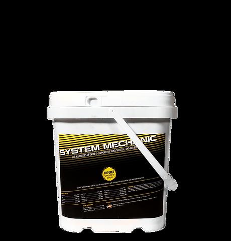 Lindner%20System%20Mechanic_edited.png