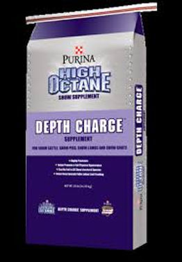 Purina Depth Charge.jpg