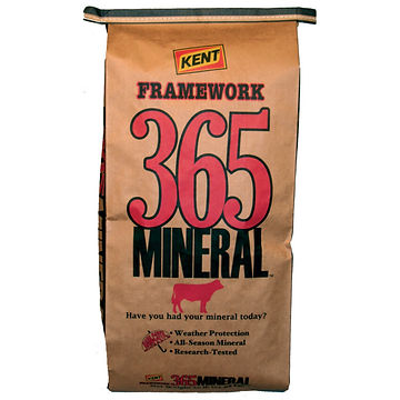 365 Mineral.jpg