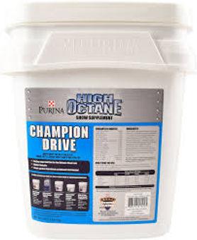 Champion Drive.jpg