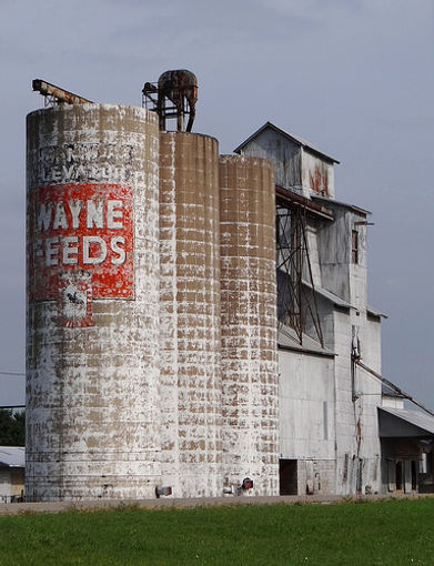 wayne feeds silos.jpg