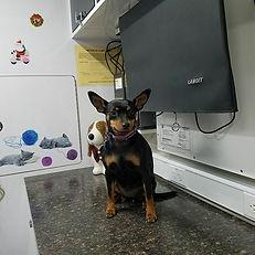 Clinic photos -06.jpg