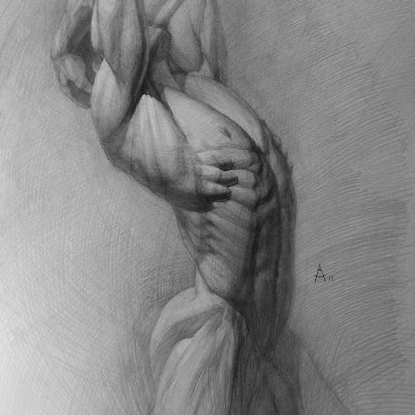 Virtual Anatomy Drawing w/ Andrey Samarin