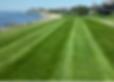 Proper lawn care and fertilzation are part of our landscape maintenance service.
