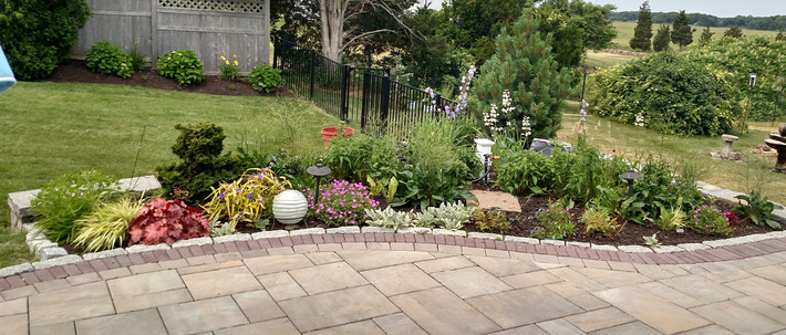 Refreshing Garden Delight
