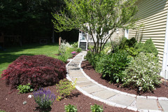 Gently Curving Garden Path