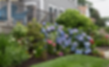 Mature landscape installation for those who want landscape installation of mature shrubs is offered.