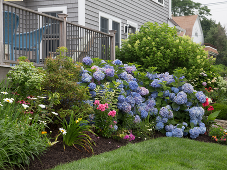 7 Front Yard Landscape Tips That Wow!