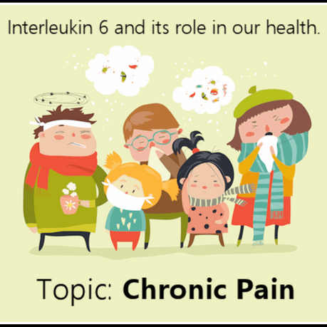 IL-6 and its role in our health: Pain and inflammation