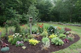 Welcome to the garden bluebirds