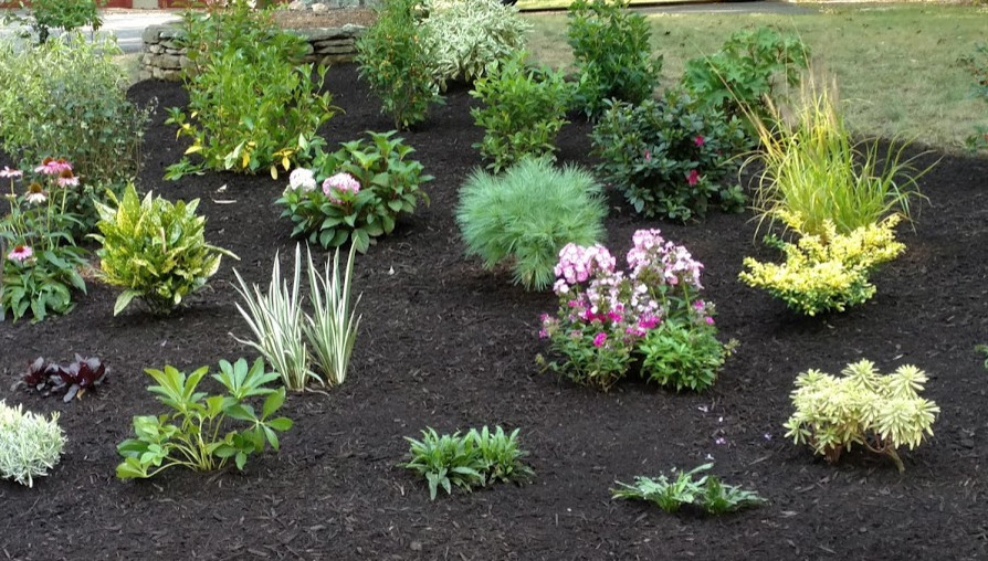 This is a section of garden we designed and installed for a client that was unable to water a lawn property.