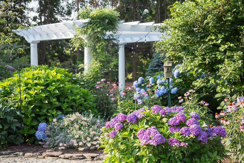 A lovely pergola in a garden