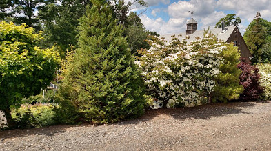 Large shrubs and trees create an effective screening