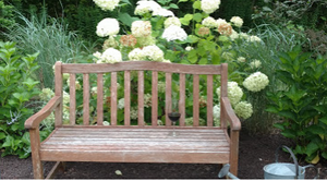 A garden bench invites you to sit and relax