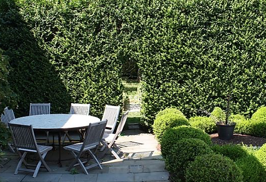 A formal landscape in Old Saybrook CT. Hedges are manicured and landscape maintenance occurs regularly.