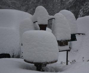 Snowy bird feeders in Madison