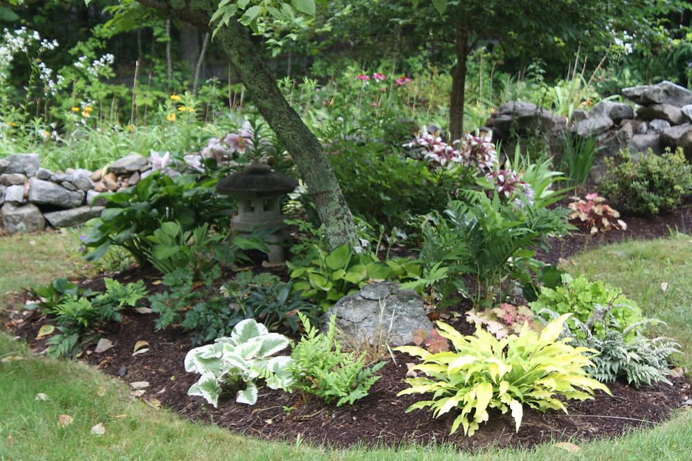 A beautiful shade garden of perennials tucked beneath a flowering dogwood