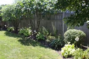 Lilac Garden Canopy