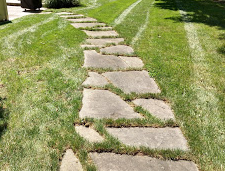 A path can be a formal walkway, or some stones set in the lawn