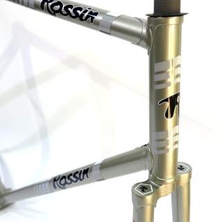 rossin silver 1.jpg