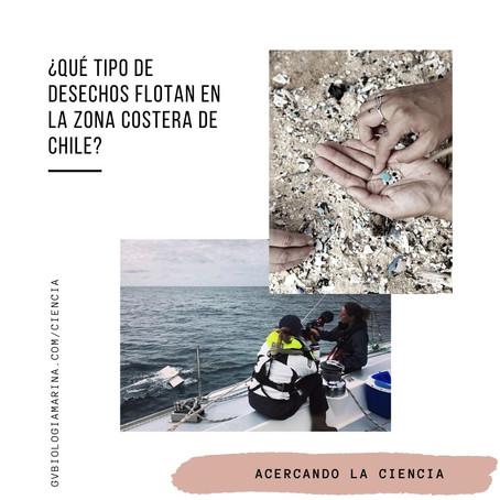 Desechos marinos flotantes en aguas costeras del Pacífico Sudeste (Chile)