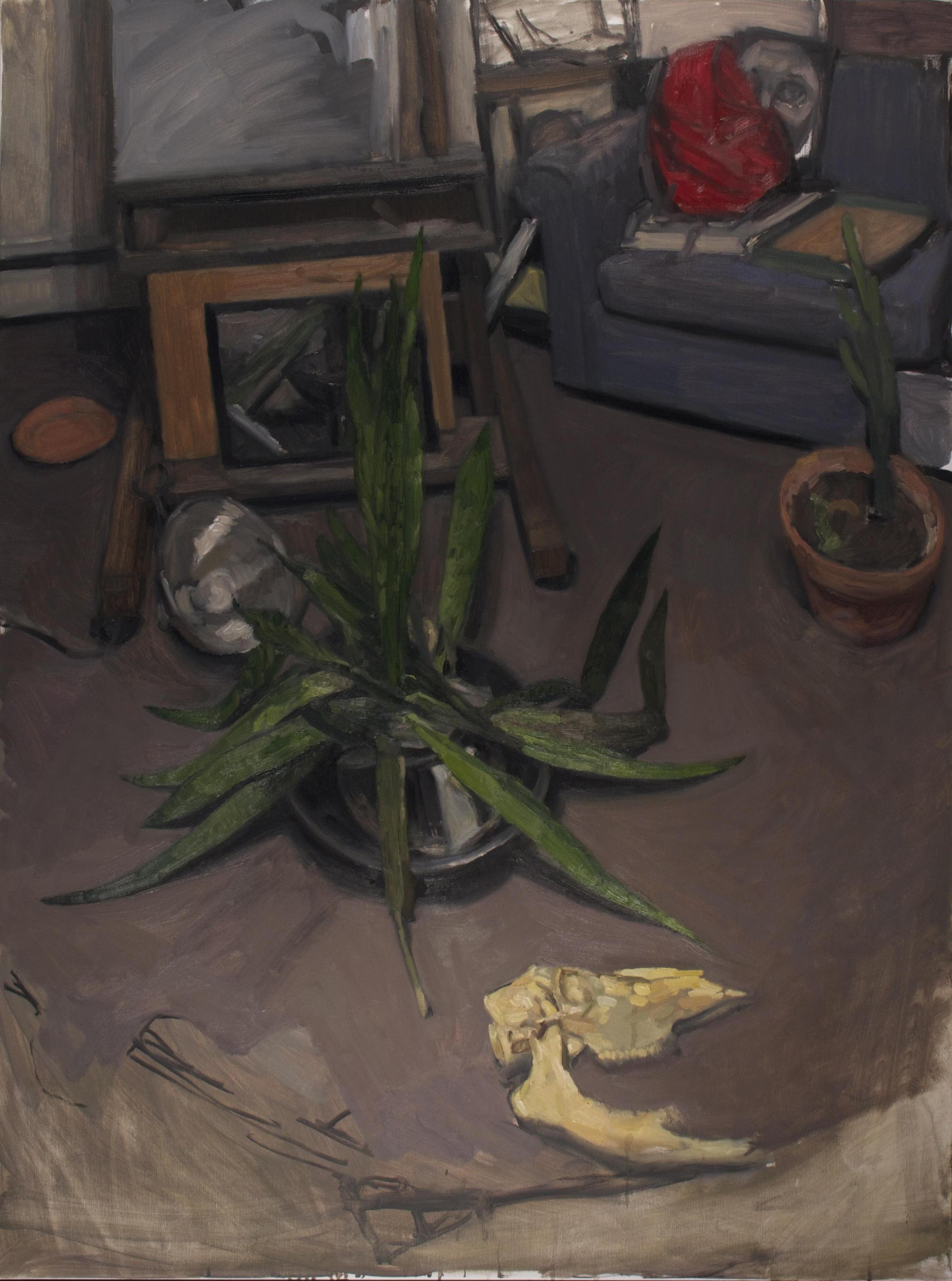 Snake Plant, Backpack, Skull,