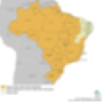 BRASIL - FIEBRE AMARILLA MAPA 1-2019.png