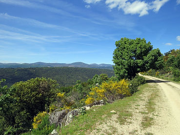 Pinedas-Alagon-valley.jpg