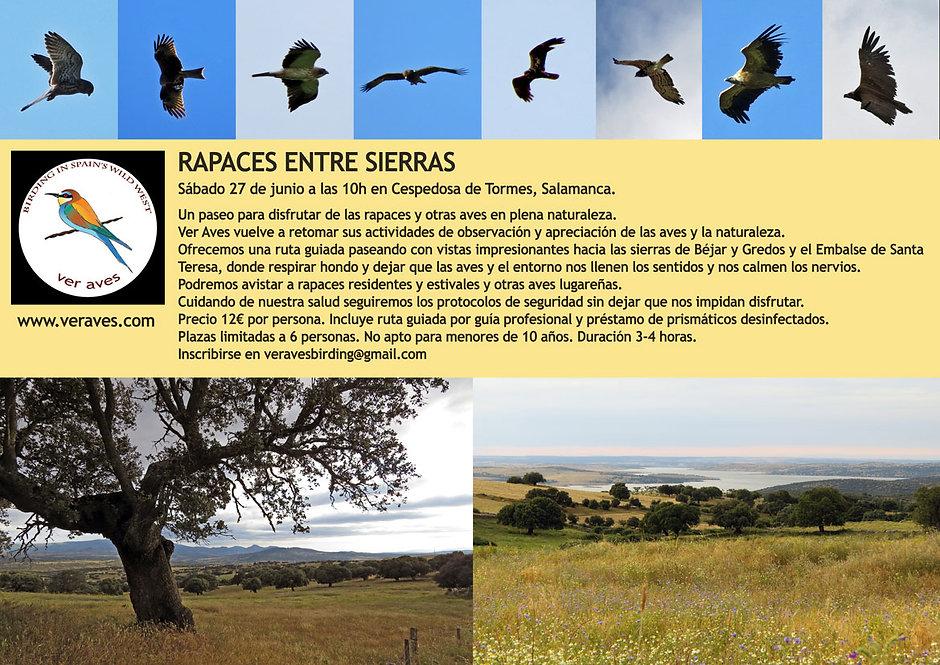 RAPACES-ENTRE-SIERRAS.jpg