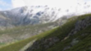 Sierra Candelario.jpg