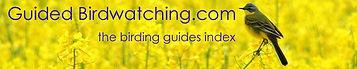 birding guides index
