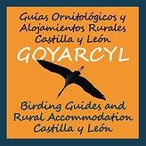 Guías ornitológicos y Alojamientos Rurales Castilla y León