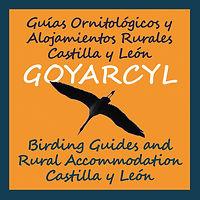 Turismo ornitológico, Guías ornitológicos, Birding Castilla y Leon