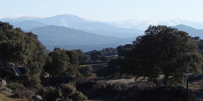 Réserve de la Biosphère de Sierras de Béjar et Francia.