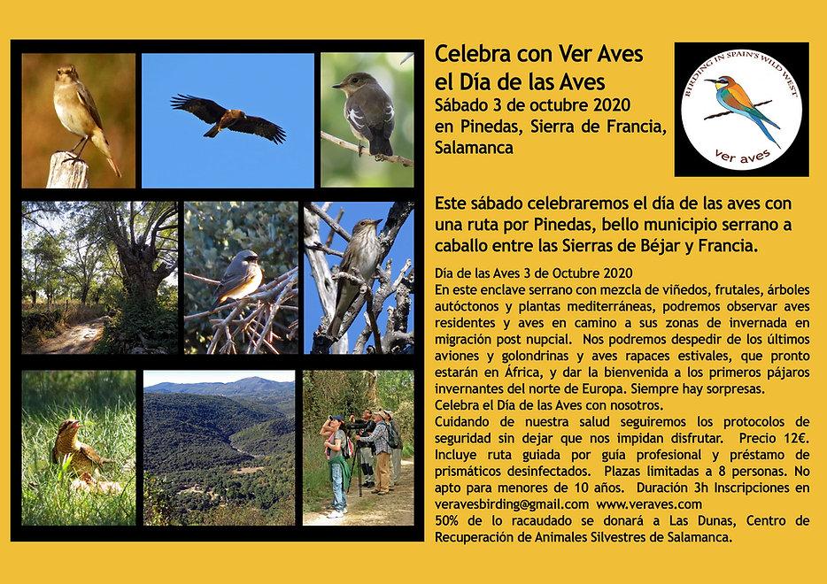 Día-de-las-Aves-2020-en-Pinedas-.jpg