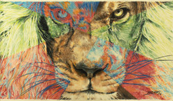 Lion Fractured