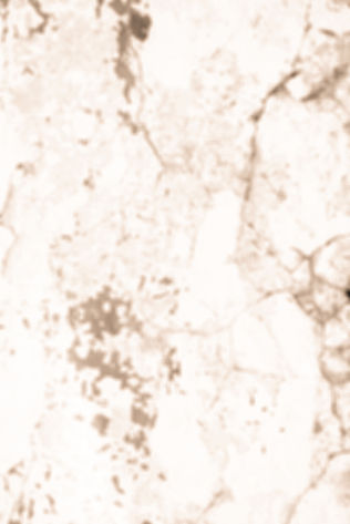 20210722_TheForge_Textures_HO-5317-2_edited_edited_edited.jpg