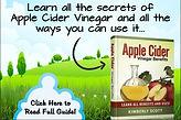 apple cider vinegar ebook membership.jpg