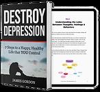 destroyer depression.png