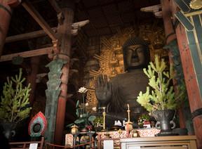 古都奈良の最高峰「国宝」巡りを開催