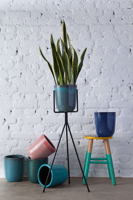 pé de planta Nº1 + vaso 21 cm