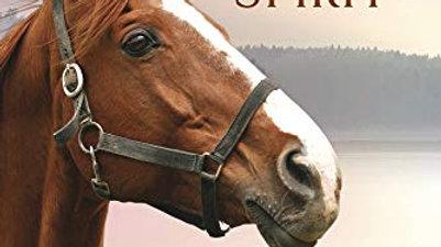 Elements Of Horse Spirit
