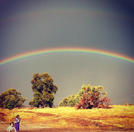 Ash and Jewel enjoying a rainbow during a summer storm in our fields of gold!
