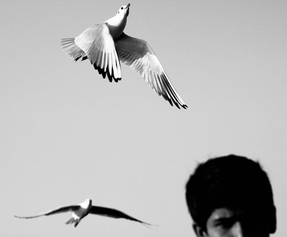 rohit-pansare-photography
