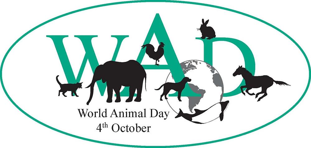 World Animal Day, October 4, 2013