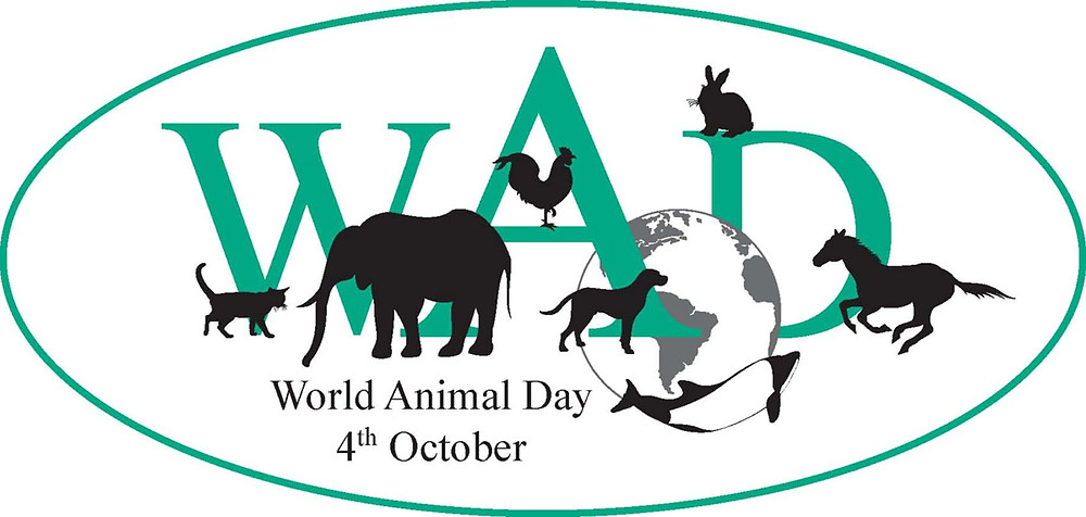 World Animal Day, October 4, 2013